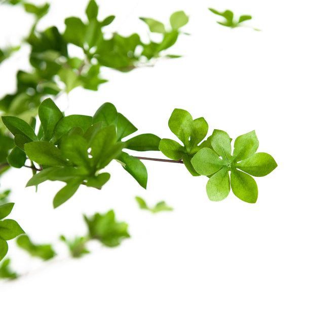 Kunst Lenteboom groen 210 cm