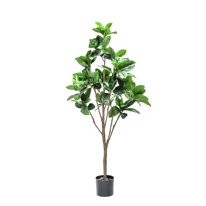 Rubber Kunst Rubberboom 150 cm