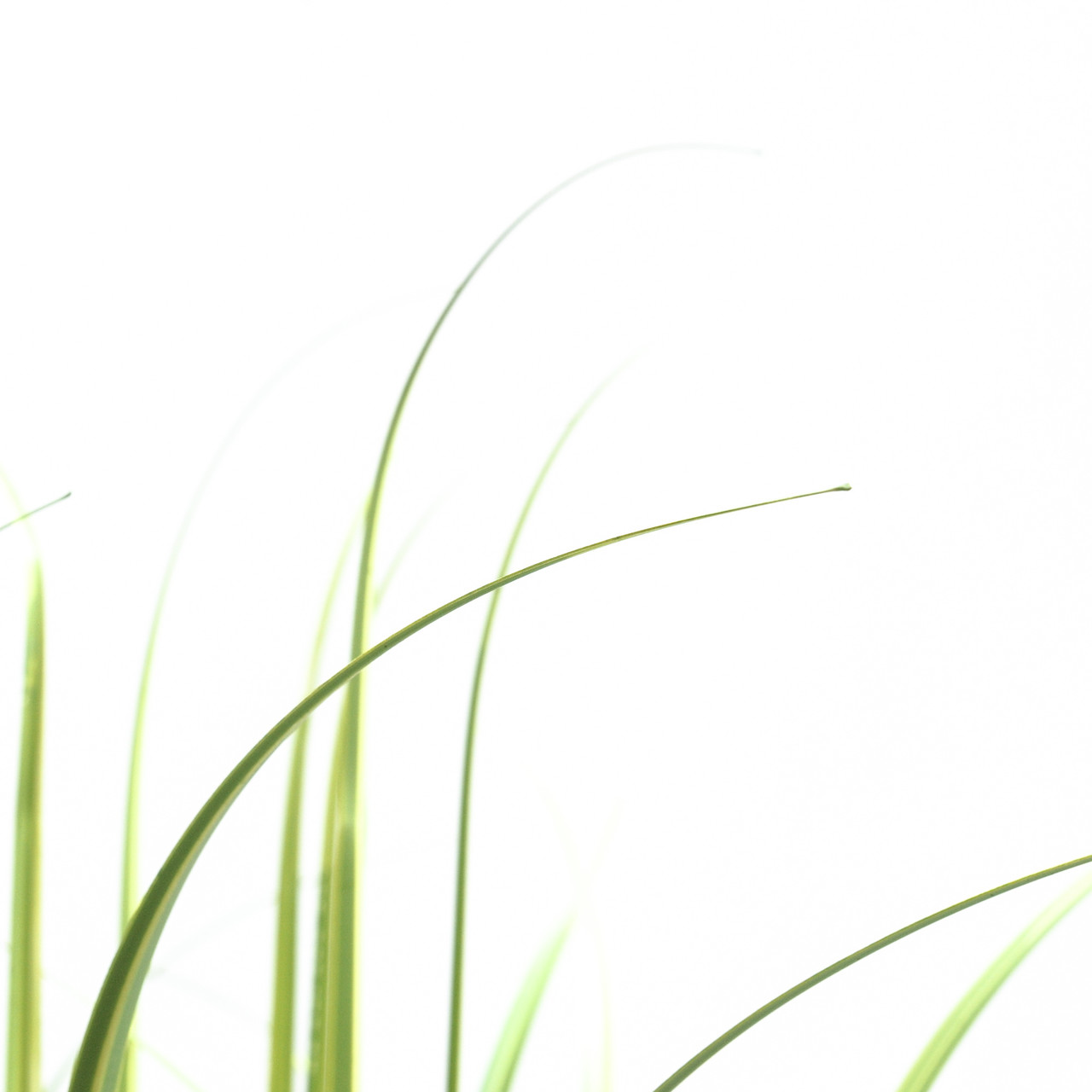 Kunst Grasplant 133 cm