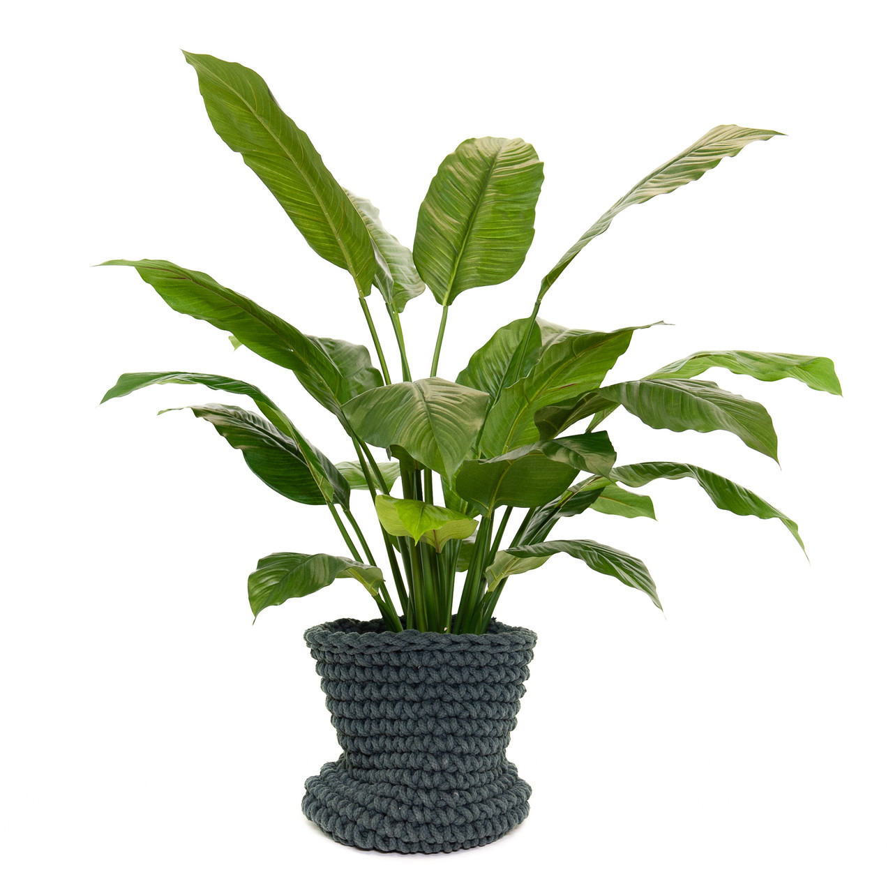 Kunst Spathiphyllum 100 cm