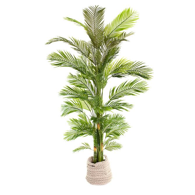 Palm Kunst Palm Areca 240 cm
