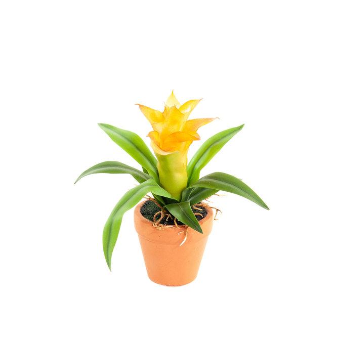 Guzmania Kunst Mini Guzmania oranje 18 cm