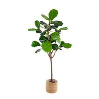Ficus Lyrata Kunst Ficus Lyrata 150 cm