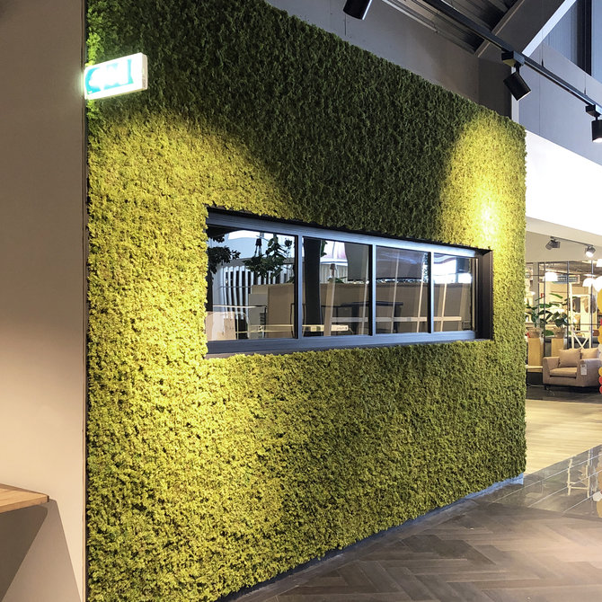 Mos Kunst Groene Wand Mos - moswanden met het mooiste kunstmos
