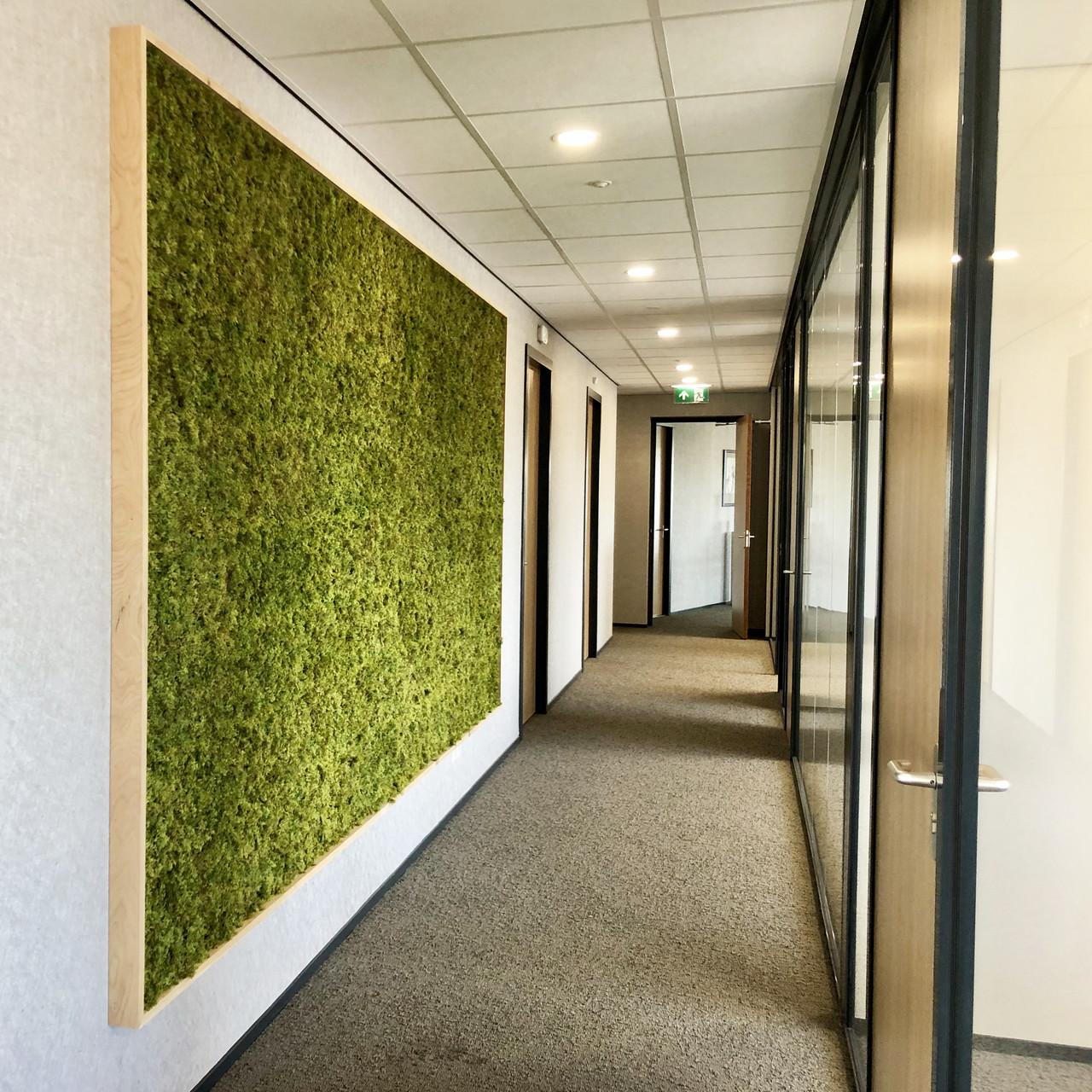 Moswand Groene Wand Kunstmos - moswanden met het mooiste kunstmos