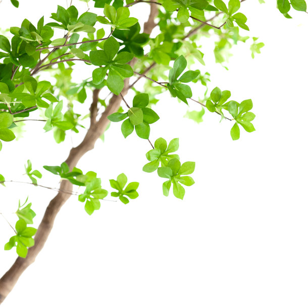 Kunst Lenteboom groen 300 cm