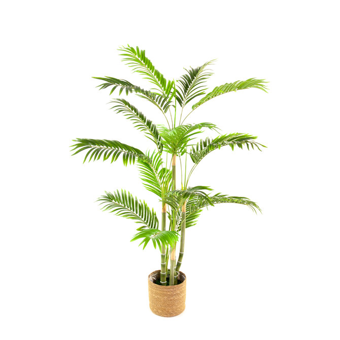 Palm Kunst Palm Areca De Luxe 130 cm