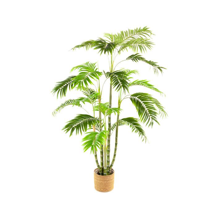 Palm Kunst Palm Areca De Luxe 160 cm