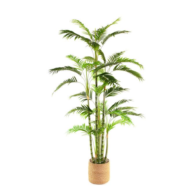 Palm Kunst Palm Areca De Luxe 180 cm