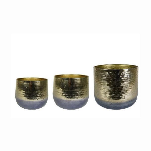Pot Gold D29 H24