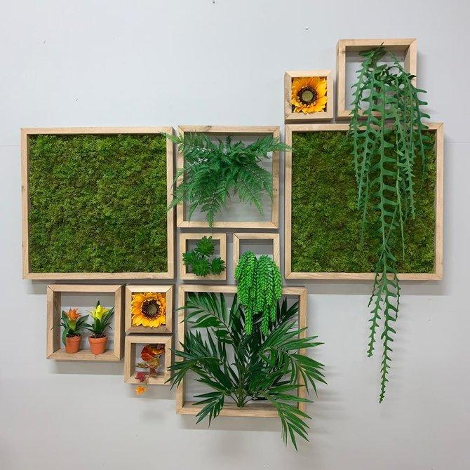 Frames Kunst Groene Wand Frames - houten lijsten met mos / plantjes