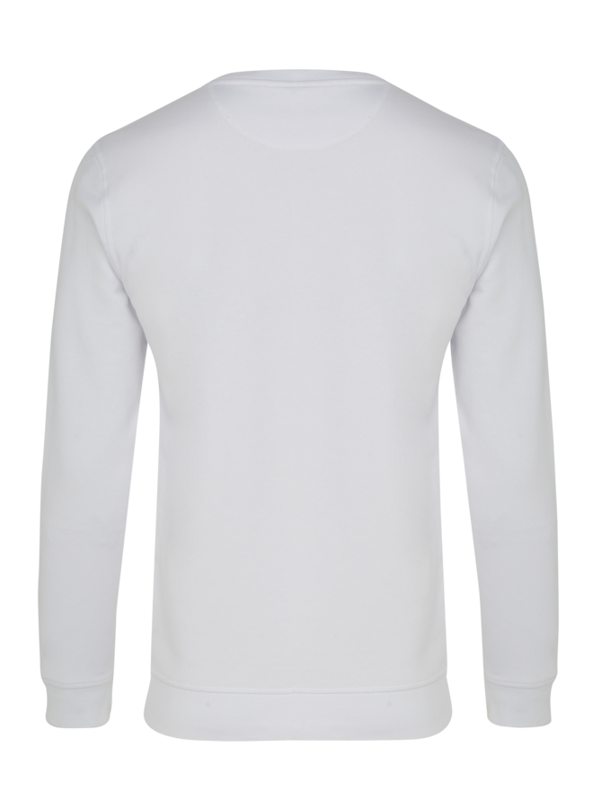 Sweater basic wit
