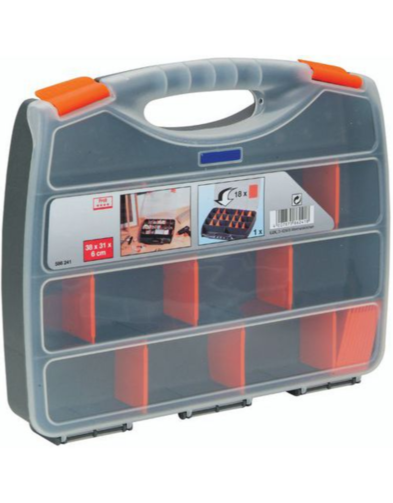 Case with dividers