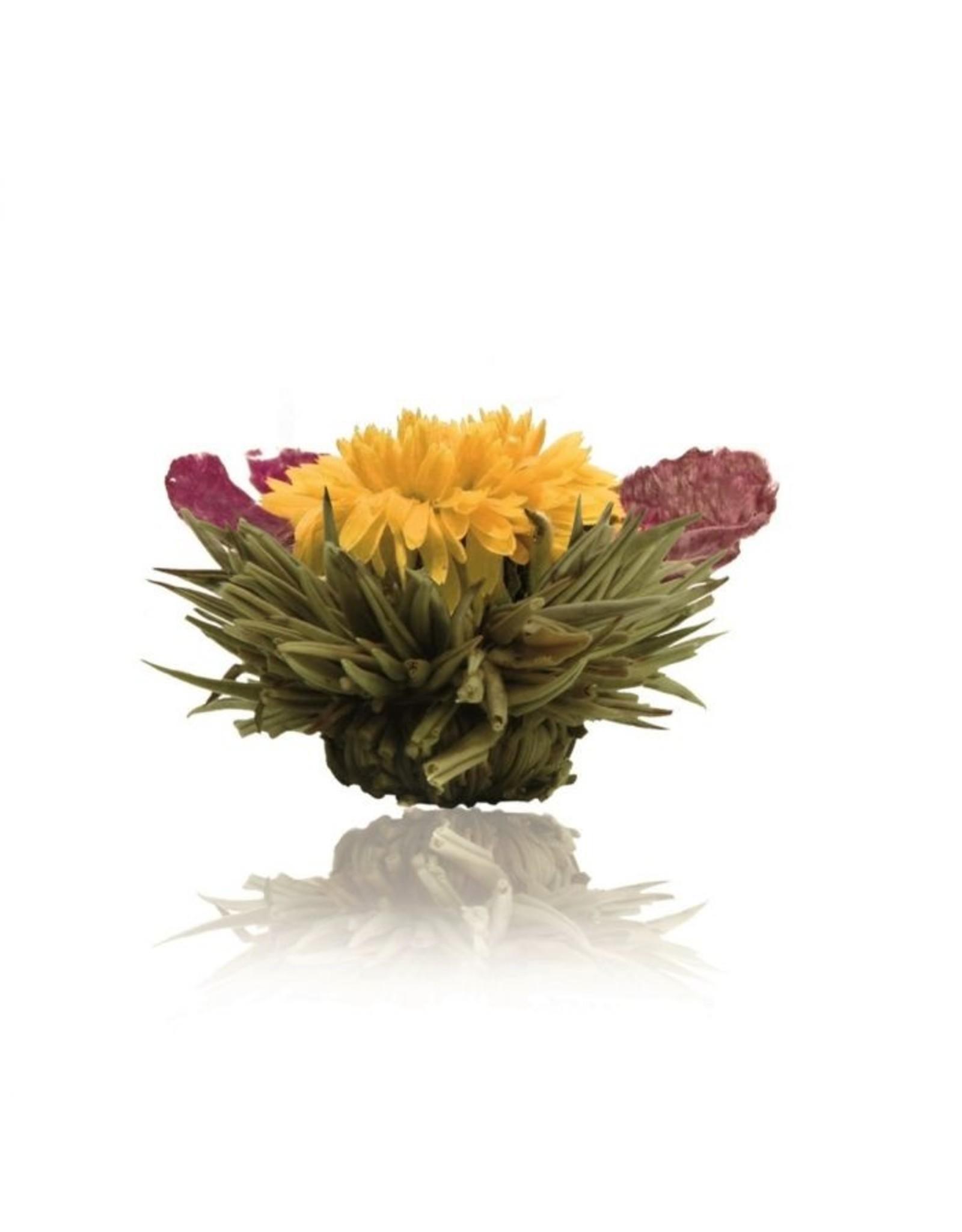 Theebloem van witte thee met een goudsbloem en de bloesem van een pioen