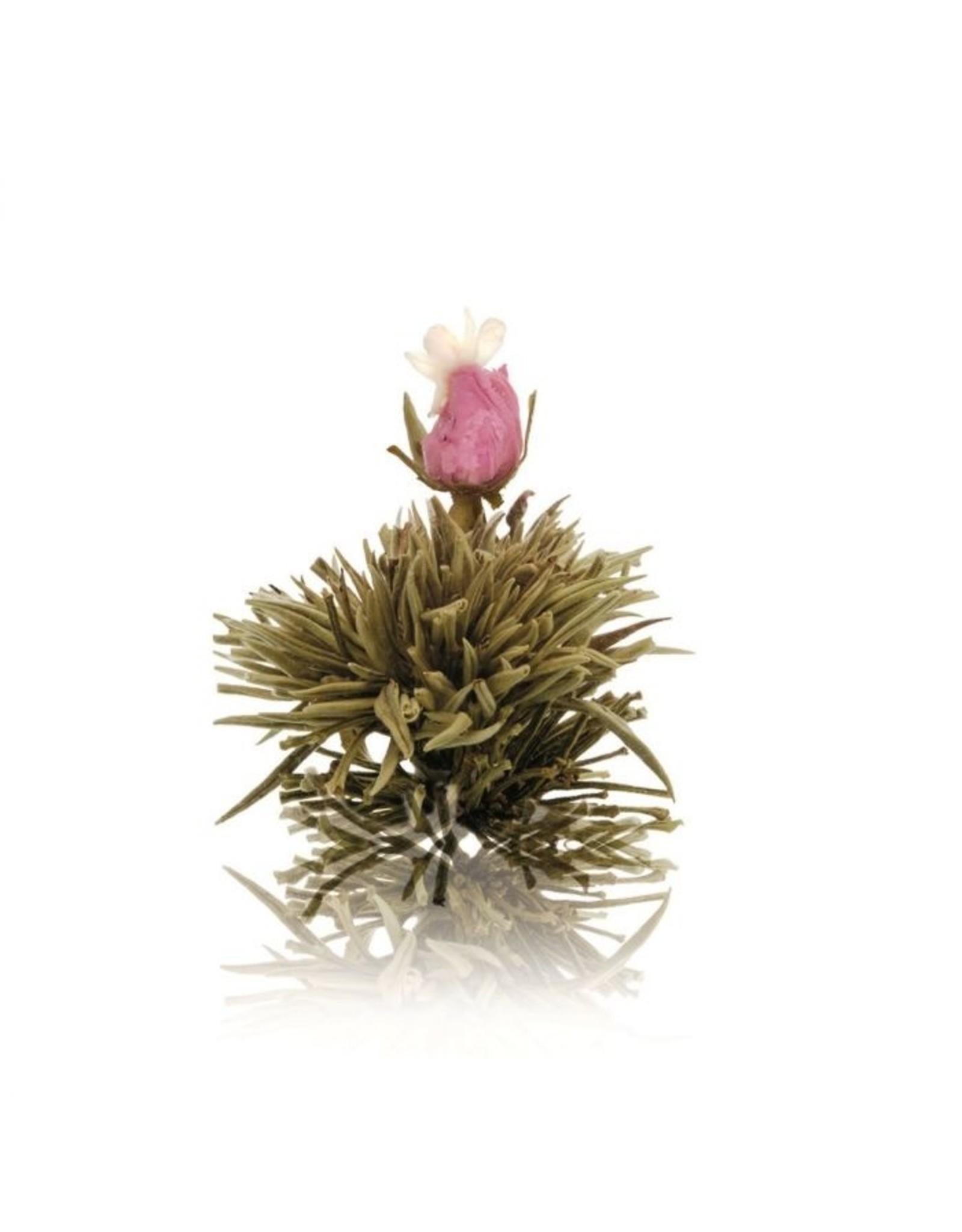 Theebloem van witte thee met roosje en jasmijn