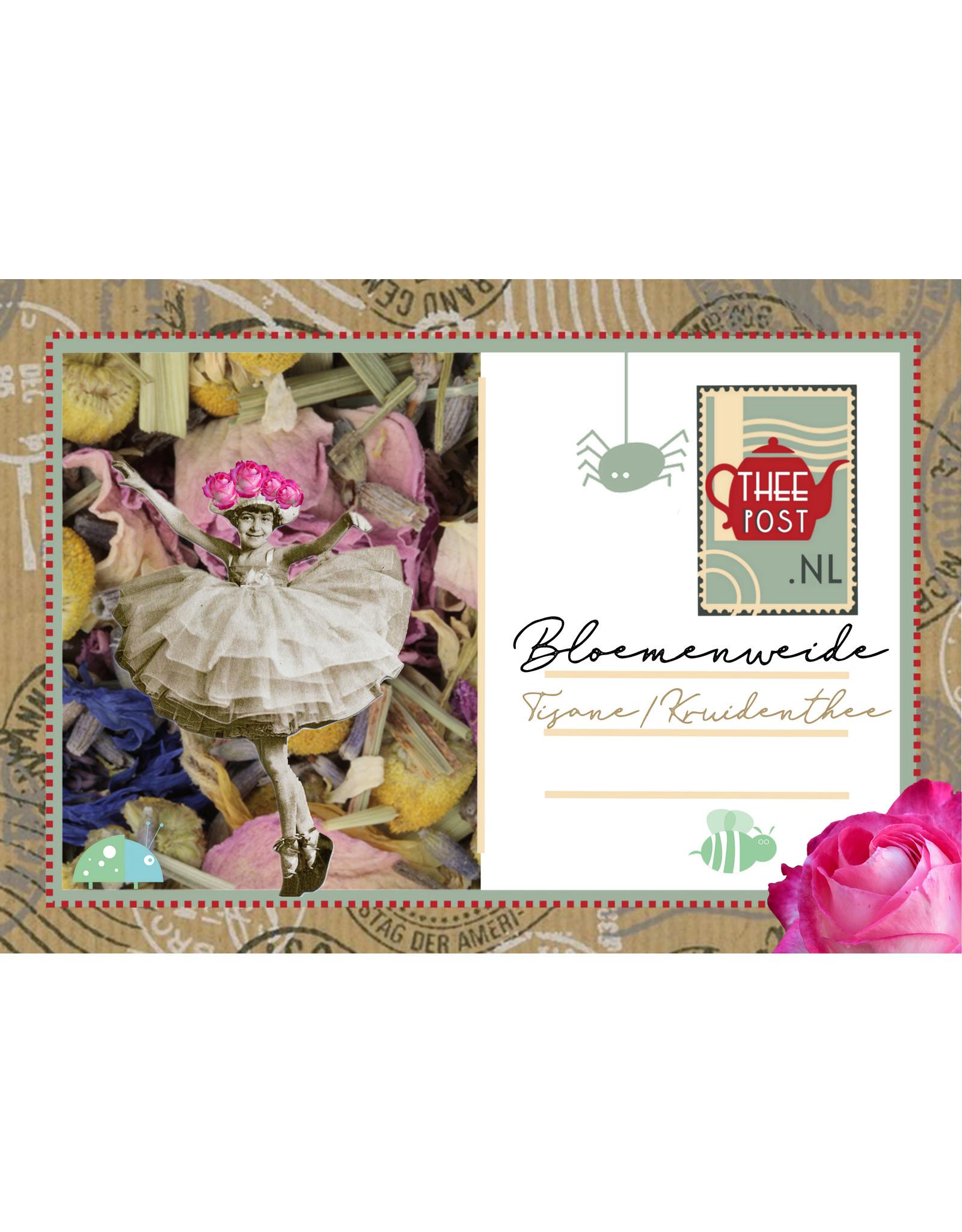 Bloemenweide & BeeFriendly-zaadjes