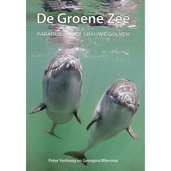 Lucas De Groene Zee Paradijs onder de grauwe golven