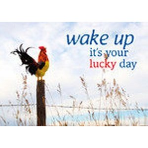 Postkaart 'lucky day'