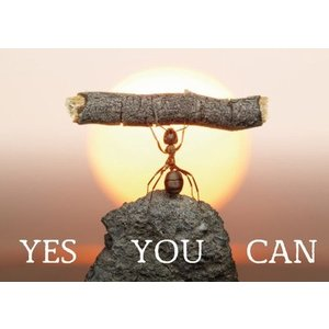 Gelukskaart 'Yes you can'