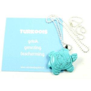 Turkoois schildpad kettinkje | eenbeetjegeluk.nl