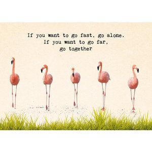 kaart met flamingo's en tekst | eenbeetjegeluk.nl