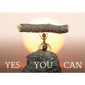 Magneet Yes You Can | eenbeetjegeluk.nl