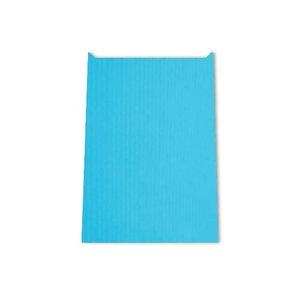 Papieren kadozakje 12 x 19 cm lichtblauw   eenbeetjegeluk.nl
