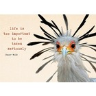 Life is too important to be taken seriously - kaart