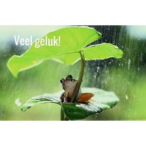 Dubbel kaartje Veel geluk met kikkertje | eenbeetjegeluk.nl