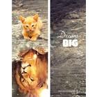 Boekenlegger 'Dream Big'