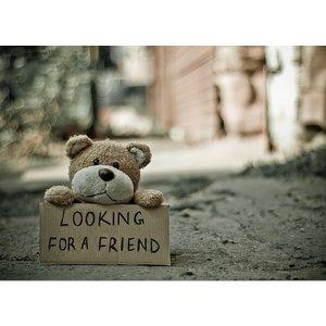 Kaart 'looking for a friend' met een lief beertje a6 | eenbeetjegeluk.nl