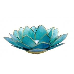 Turquoise lotusbloem