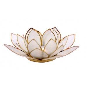 Witte lotusbloem met goudkleurige randen