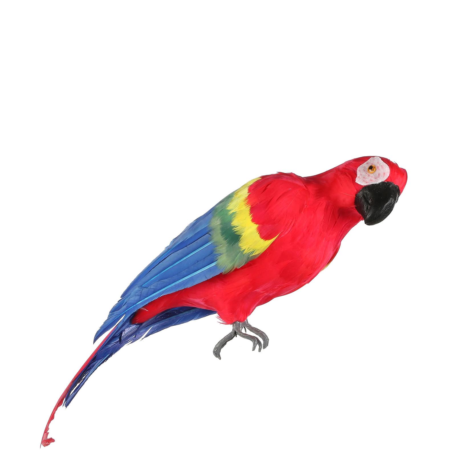 MiCa 1062376 Papegaai rood