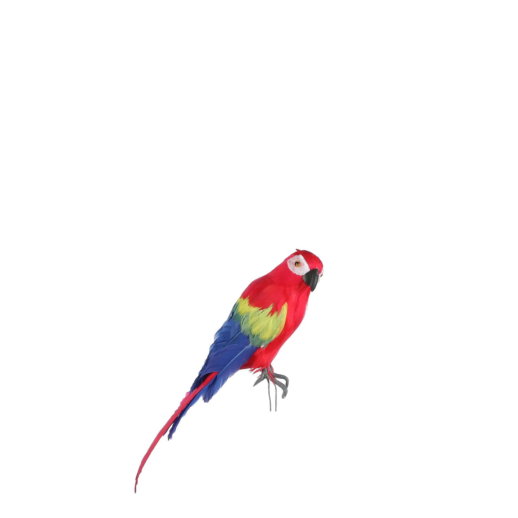 MiCa 1062374 Papegaai rood