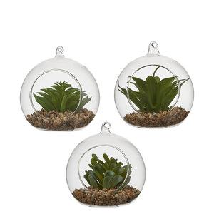 MiCa 1047780 Vetplant groen