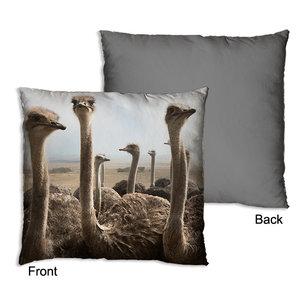 MiCa Pillow Ostrich