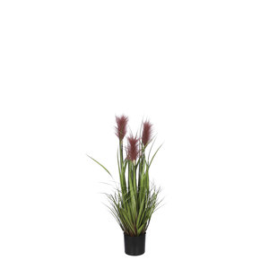 Mica Decorations Ornamental grass in pot brown