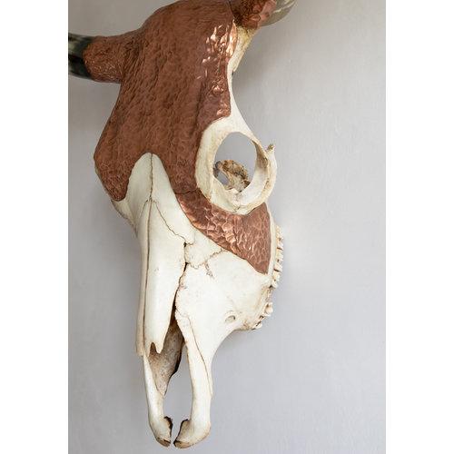 Bazar Bizar The Copper Skull