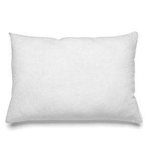 Bazar Bizar Inner Cushion - 30x50