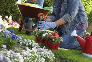 Tuinwerkzaamheden