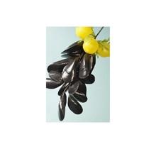 Decoratie Mosselen & citroen