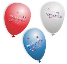Ballonnen - Hollandse Nieuwe (50st.)
