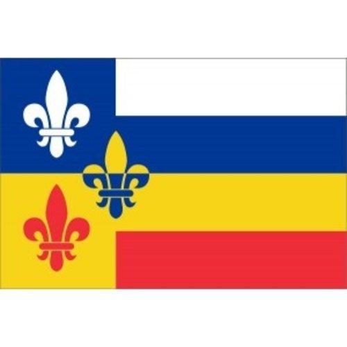 Vlag gemeente Bergeijk
