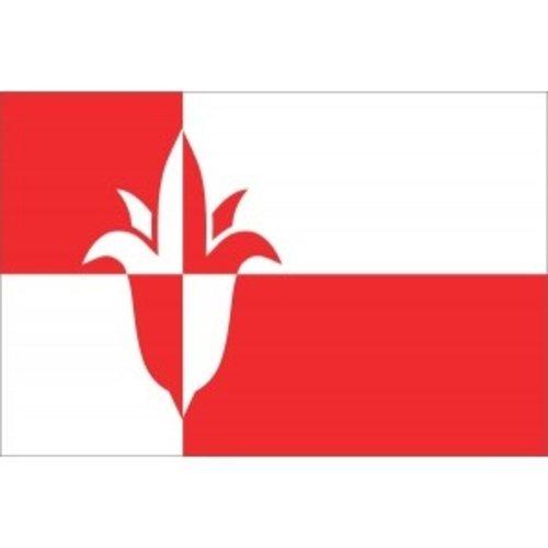 Vlag gemeente Bernheze