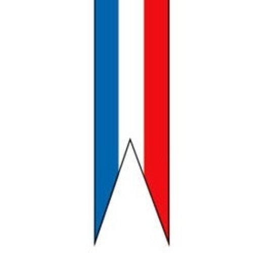 Nederlandse wimpel zonder stokje in diverse afmetingen zwaluwstaart