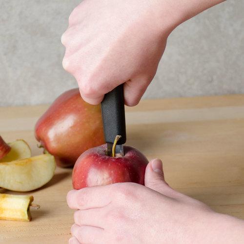 Paderno Apple Corer | 21,00 cm | ø 1,20 cm | 48280-25 | Stainless steel