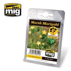 Marsh Marigold - A.MIG-8451
