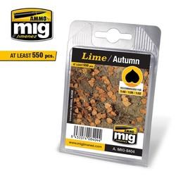 Lime - Autumn - A.MIG-8404