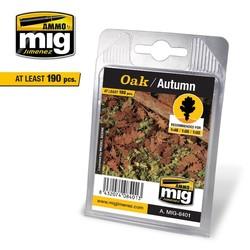 Oak - Autumn - A.MIG-8401